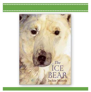 The Ice Bear book Jackie Morris
