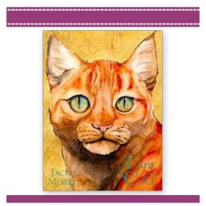 I Am Cat book Jackie Morris cover