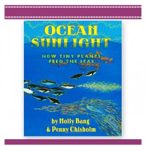 ocean sunlight, how plants feed seas children's book